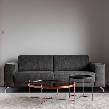 Inneneinrichtung mit grauem Sofa und Metallcouchtisch Standard-Bild