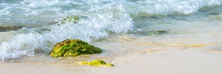 Panorama of rock with green moss in waves of blue ocean at exotic island in Cabo Verde, Cape Verde