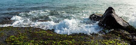 Panoramic view od ocean waves breaking on stone shore with green seaweed Stock fotó
