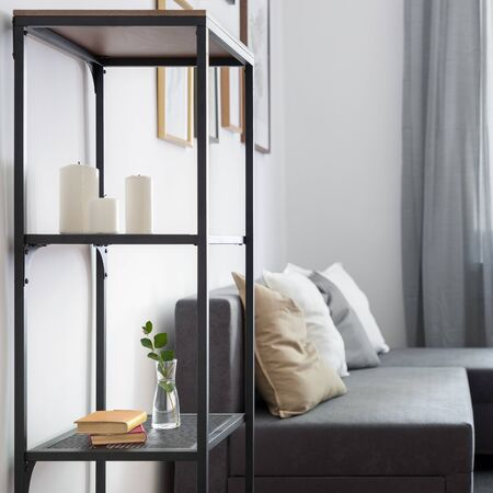 Contemporary living room with simple bookshelf, coffee table and gray sofa Standard-Bild - 129442756