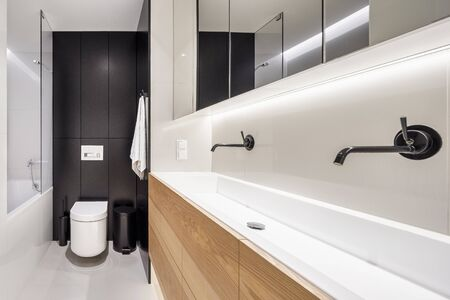 Elegant bathroom with long, double washbasin with stylish black taps