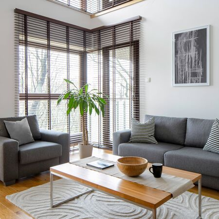 Stylish living room with gray furniture and big windows with blinds