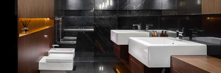Panorama of dark bathroom with shower, two washbasins, toilet and bidet and marble tiles on the floor and wall and wooden accents Reklamní fotografie