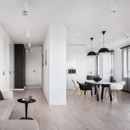 Spacious apartment in black and white with kitchen open to living room and corridor