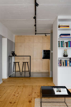 Small and stylish apartment with pine wood floor and exposed concrete on walls and ceiling