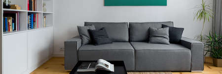 Simple and comfortable gray couch in living room with white bookcase, black coffee table and wooden floor