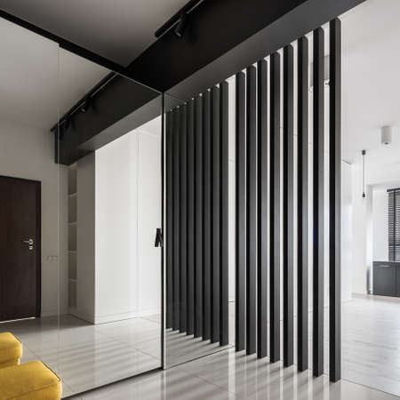 Elegant and stylish corridor with mirror on wardrobe door and designed wall with black, vertical boards Imagens
