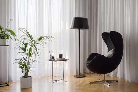 Stylish relax corner with modern black armchair, lamp, coffee table, green plants and windows behind fancy white curtains Imagens