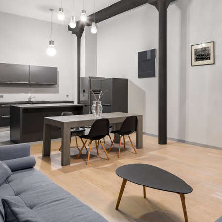 Stylish loft apartment with spacious kitchen with modern, gray dining table open to living room with gray sofa and small coffee table