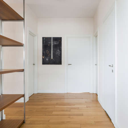 Spacious apartment corridor with white walls and doors, wooden floor and shelves and stylish art