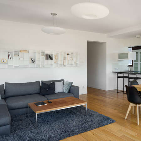 Spacious living room with wooden floor and coffee table and big dark couch and fluffy carpet Banque d'images