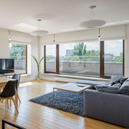 Window wall in spacious and bright living room with wooden floor, fluffy carpet and simple sofa with coffee table