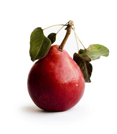 anjou: Pera con hojas de color rojo sobre fondo blanco