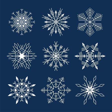 icon set of 9 different snowflakes  Vector