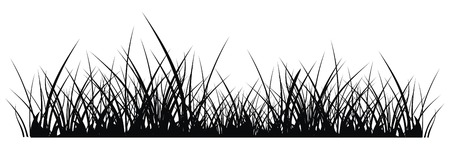 uncultivated: vector silhouette of grass on white background