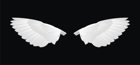 Two white vector wings on black background Vector