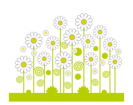 camomiles: Green Field of flowers. Vector.