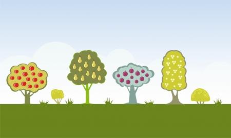 Four Fruit trees vector illustration Stock Vector - 3131588