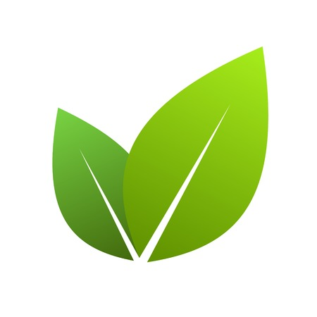 leaves green: Vector illustration of ecology concept icon with glossy green leaves