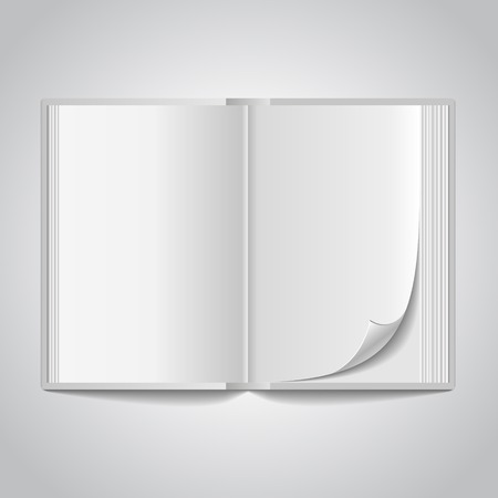 blank newspaper: Open blank book spread on white background.