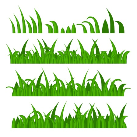 grass blade: Green Grass Constructor on White. Vector illustration