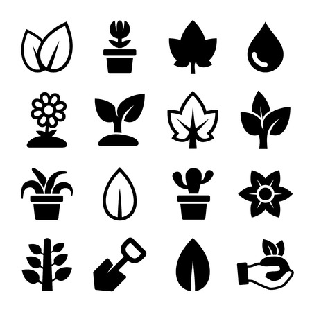 plant pot: Leaf and Plants Icons Set. Vector Illustration Illustration