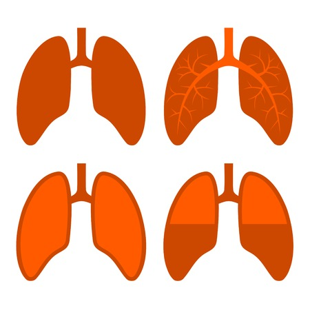 lung transplant: Human Red Lung Icons Set. Vector Illustration. Illustration