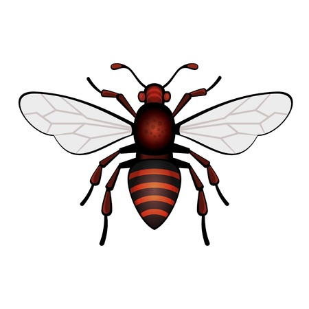 Red Bee Icon in White Background   Vector
