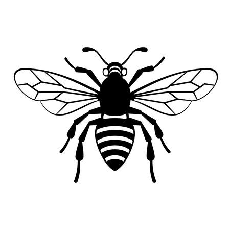 escarabajo: Icono de la abeja en el fondo blanco ilustración vectorial