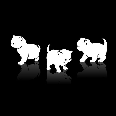 White Cats Silhouettes Icons on Black Background. Vector illustration Vector