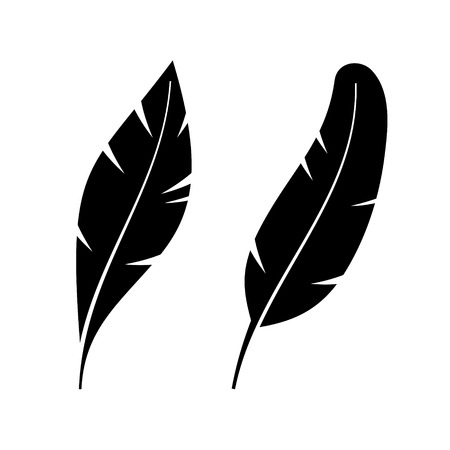 wet flies: Two Icon Style Feathers on White Background. Illustration