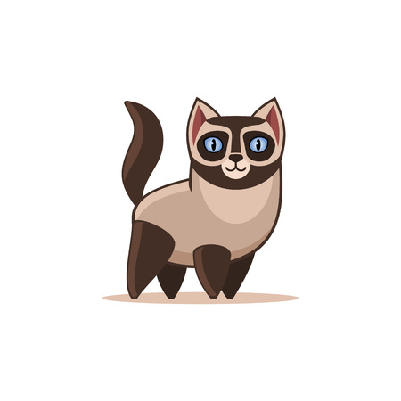 Siamese Cat Isolated on the White Background.