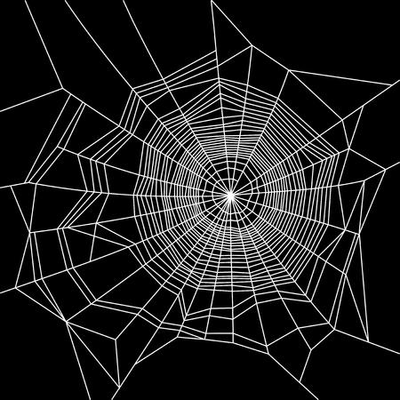 s trap: Cobweb. White on Black Background. Vector illustration