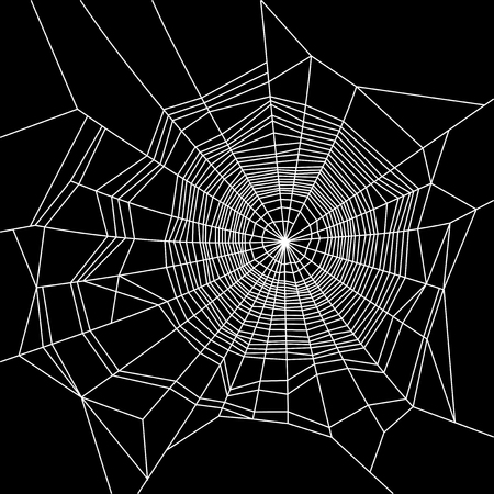 Cobweb. White on Black Background. Vector illustration