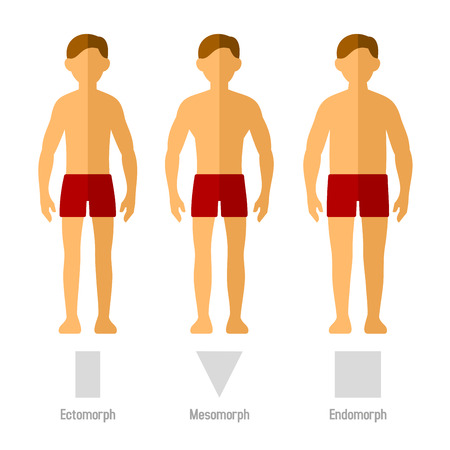 average: Men Body Types in Flat Style.