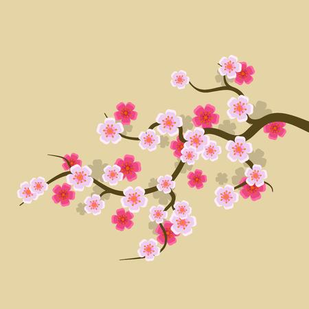 flores chinas: Sakura florece el fondo. ilustración vectorial flor de cerezo