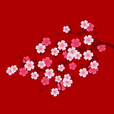 rosa negra: Rama de Sakura sobre fondo rojo. El cerezo oriental. ilustración vectorial