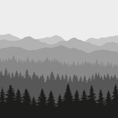 fog forest: Coniferous Forest and Mountains Background. illustration