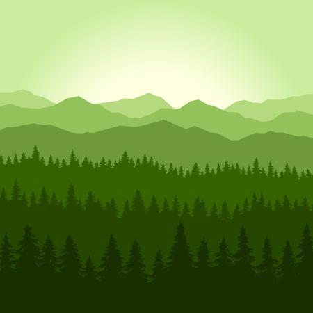 coniferous forest: Niebla Verde Bosque de Coníferas y las montañas de fondo. ilustración