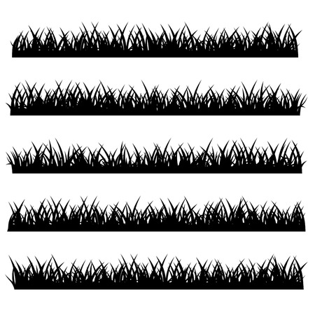grass silhouette: Silhouette of Grass Set Isolated on White Background. illustration