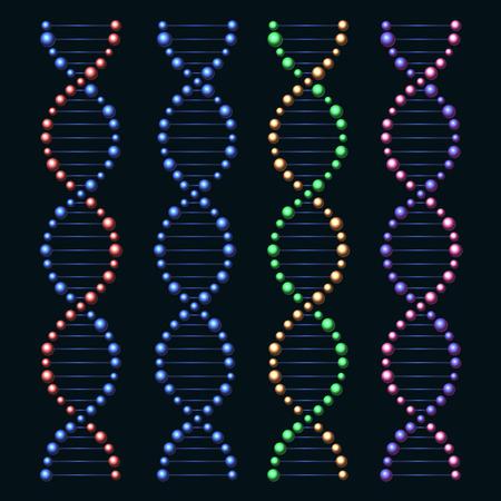 genome: DNA Genome Molecules Set on Black Background. Vector illustration Illustration