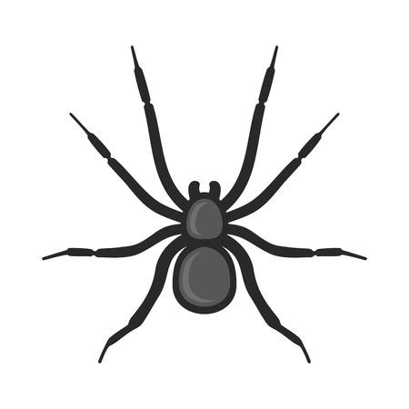 arachnophobia: Black Spider Icon on White Background. Vector illustration