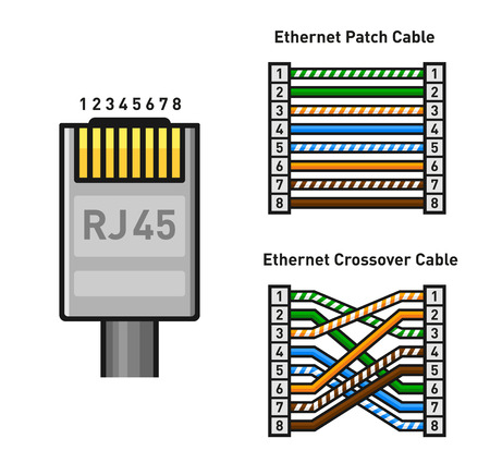 Ethernet Connector Pinout Color Code. Straight and Crossover RJ45 Connect. Vector illustration