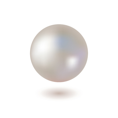Shiny Pearl on White Background. Vector