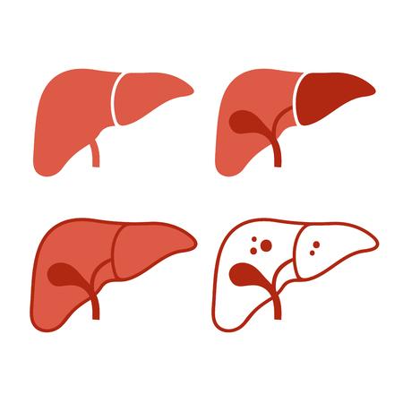L'icona del fegato ha messo su fondo bianco, illustrazione di vettore.