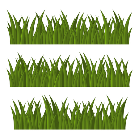 Green Grass Borders Set on White Background. Vector illustration