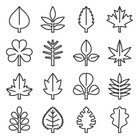 Leaf icons set on White Background. Line Style Vector