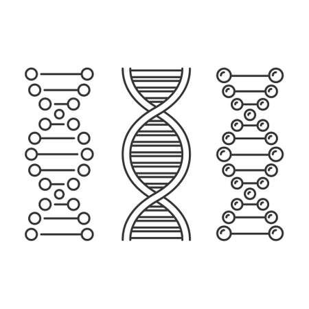 DNA Icons Set on White Background. Vector 矢量图像