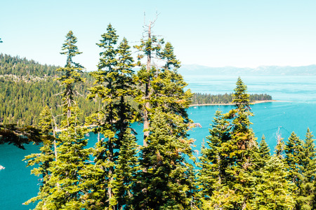 south lake tahoe: Photo of Trees in front of Emerald Bay and Lake Tahoe