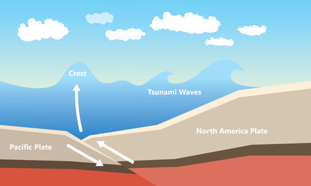 Cause of tsunami vector illustration.